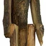 """""""Cierniem koronowany"""" / rzeźba drewniana Edwarda Dudy"""